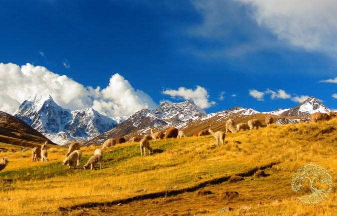 Luxury Peru Travel - AdrenaLuxe Ausangate Trek