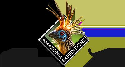 Amazonia Expeditions Logo