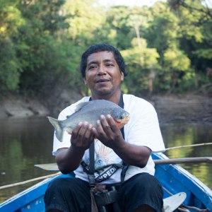 Fishing for Pirhana