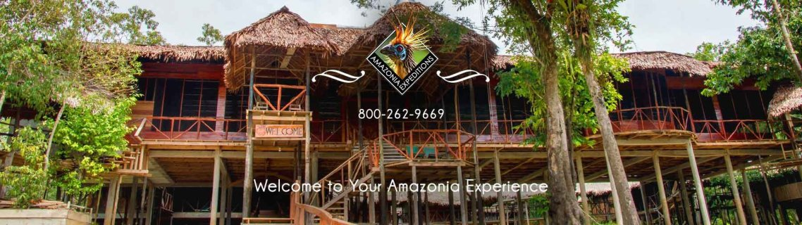 Amazonia Expeditions Tahuayo Lodge. 800-262-9669. Welcome to your Amazonia Experience.