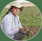 Мака Перуанская для мужчин купить