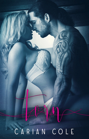 Hot New Release! ~Torn (Devils Wolves #1) by Carian Cole
