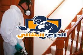 شركة مكافحة البق بعنيزة   شركة مكافحة البق بعنيزة 0555260478 images 5
