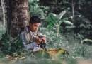 Pemuda Qur'ani