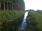 fiume Cragno, Sella di Rivignano sopra il NK giugno 2013