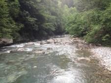 Degano, Rigolato - Giugno 2014