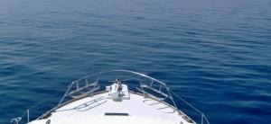 pesca-sportiva-abruzzo-silvi-daltura-mare-noleggio-barche-motoscafi-01