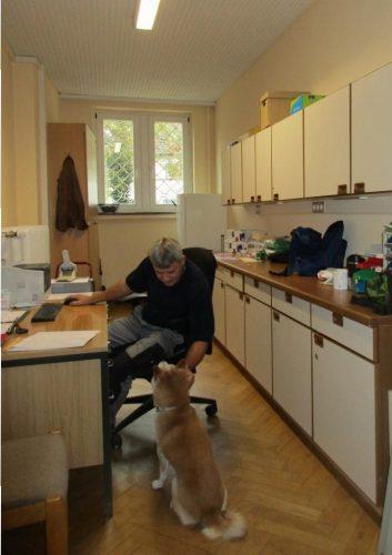 Das Reich des Hausmeisters