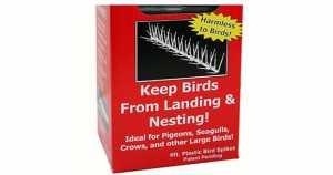 Plastic Pigeon Spikes