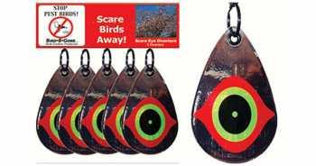 Scare Birds Away