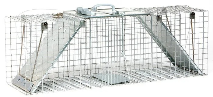 Large 2-Door Easy, Convenient Set Trap by Havahart