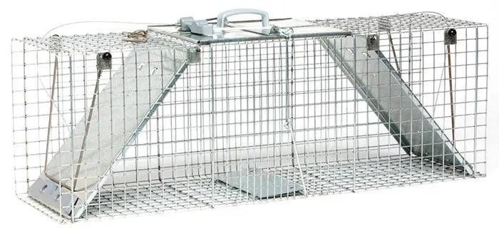 Large 2-Door Easy, Convenient Set Trap by Havahart