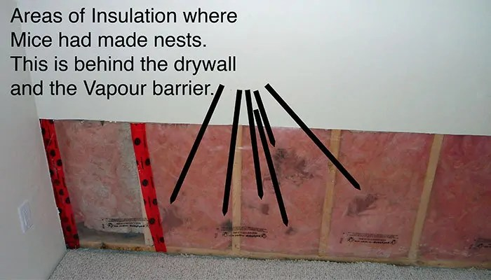 Areas of Insulation