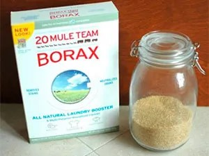 Borax and sugar