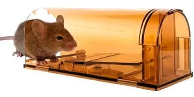 CaptSure Mice Trap