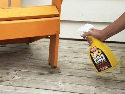Effective carpet bug removal