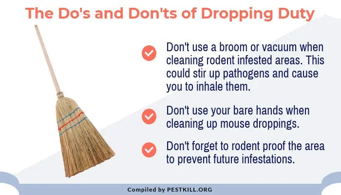 Infographic: The do's and don'ts of dropping duty