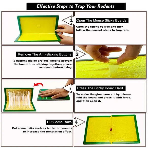 Effective Steps to Trap Your Rodents