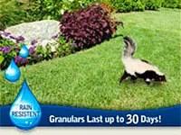 Granular skunks repellents