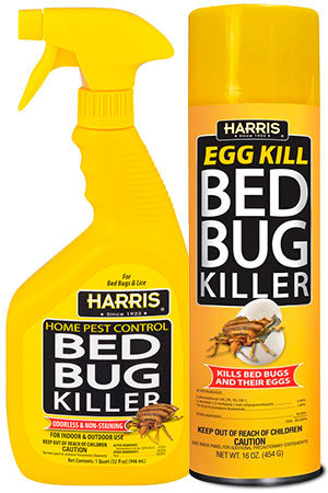 in does work killer pertaining killers insect blood picturesque bug kill top bed fast egg to walgreens harris sprays sucking