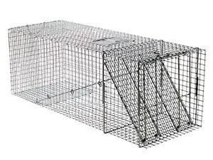 Havahart X-large one door trap