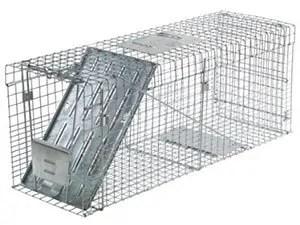 Havahart Large One door Collapsible trap