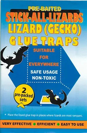 Gecko Lizard Trap Enclosed