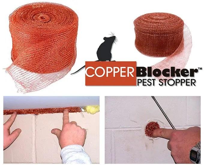 Cooper Mesh pest stopper
