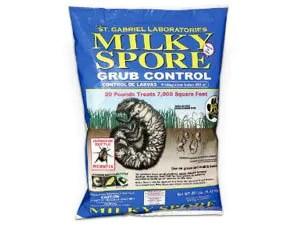 Milky spore: effective method of japanese beetles control