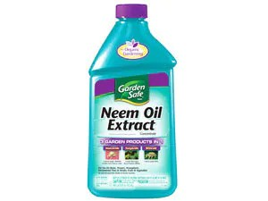 Neem Oil Extract