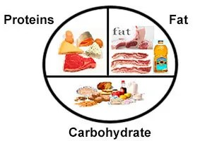 Proteins, Fat and Carbohydrate