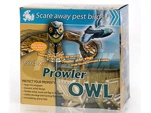 Prowler OWL