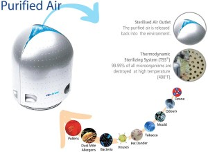 Purified Air