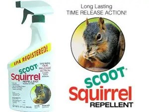 Scoot squirrel repellent