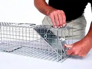 How to set one door trap