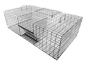 Tomahawk's single door live pigeon trap