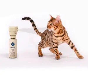 SSS Cat Automated Cat Deterrent Spray