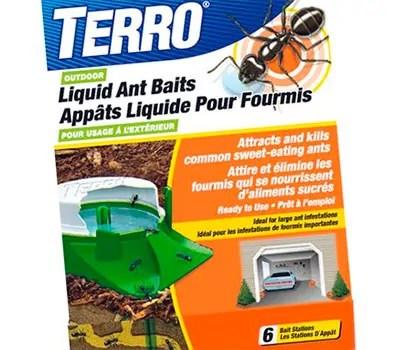 Liquid Ant Bait by Terro
