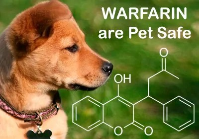 Warfarin are Pet Safe