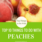 Top 10 Things to Do with Peaches