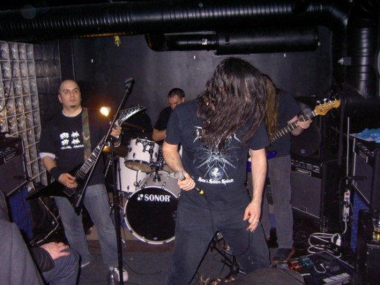 Image result for phidion band live