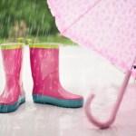 מדוע אנו אומרים בתפילת עמידה של שמיני עצרת משיב הרוח ומוריד הגשם