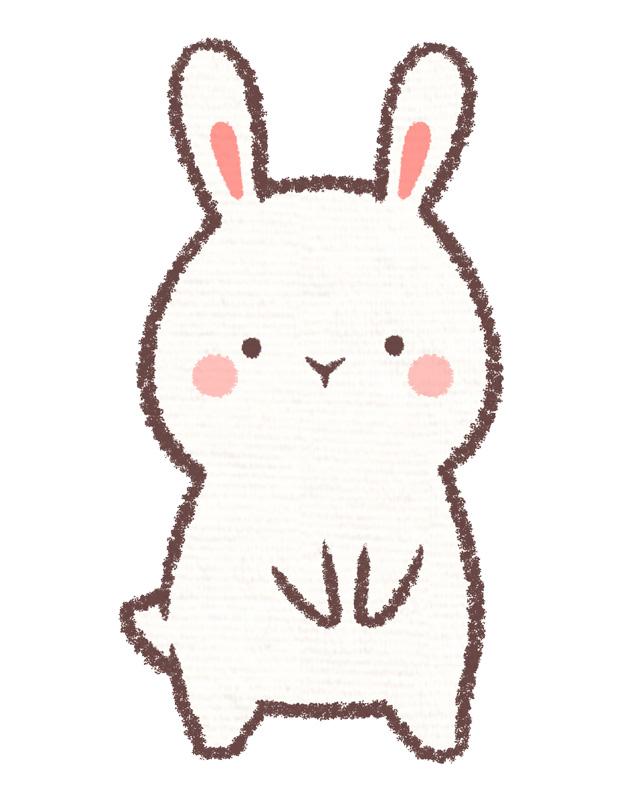 ウサギ外来