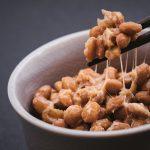 犬に納豆を食べさせるのは大丈夫?注意点や効果、おすすめなレシピも!