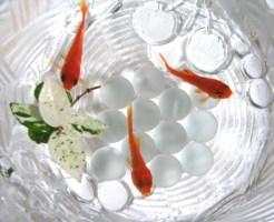 金魚 赤い 斑点