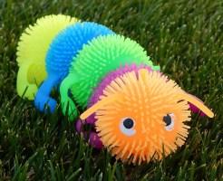 カゲロウ 幼虫 飼育 餌 寿命
