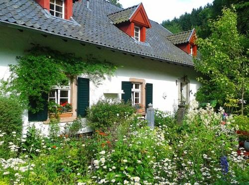 garden-302259_640