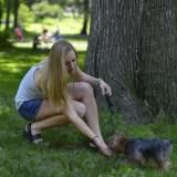 犬が甘える時のサインとは?飼い主なら気付いておきたい犬の甘え方