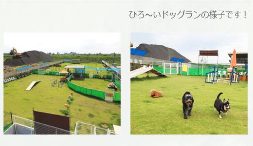 わんちゃんの広場|富山県中新川郡