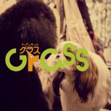 ドッグ&キャット グラス|大阪府大阪市天王寺区